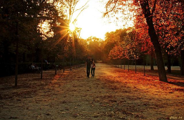 mladí pár na rande v parku